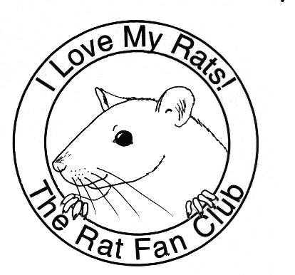 Dumbo Rat Drawing The Rat Fan Club ""